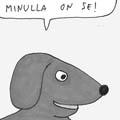 koirankakkaa_2